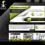 Lancement du site web : www.studio-kiwik.fr